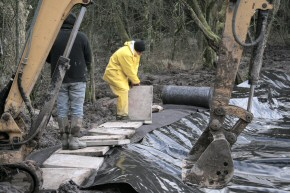 Picture of clearance work at Drumore Pond, December 2009, 27KB